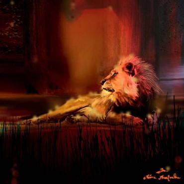 tableau lion SouthAf  par Rémi Bertoche